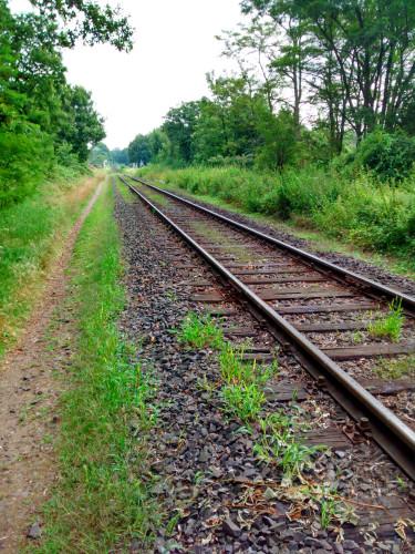 Die Bahnstrecke Moers-Rheinberg der ehemaligen Moerser Kreisbahn, die heute nur noch im Güterverkehr durch die NIAG betrieben wird.