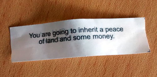 You are going to inherit a peace of land and some money.
